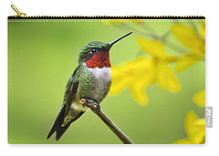 Beautiful Summer Hummer Carry-all Pouch