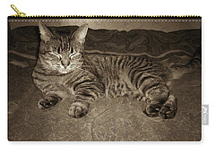Carry-all Pouch featuring the photograph Beautiful Tabby Cat by Absinthe Art By Michelle LeAnn Scott