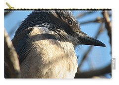 Beautiful Western Scrub Jay Carry-all Pouch