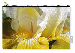 Beauty For The Eye Carry-all Pouch by Bruce Bley