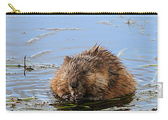 Beaver Portrait Carry-all Pouch by Dan Sproul