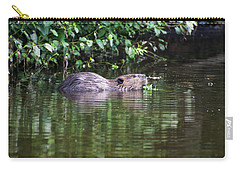 beaver swims in NC lake Carry-all Pouch