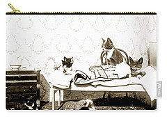 Carry-all Pouch featuring the photograph Bed Time For Kitty Cats Histrica Photo Circa 1900 by California Views Mr Pat Hathaway Archives