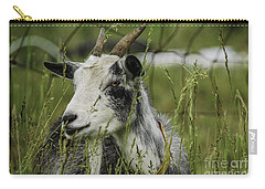 Betsy Carry-all Pouch by Mary Carol Story