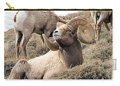 Big Bighorn Ram Carry-all Pouch