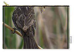 Carry-all Pouch featuring the photograph Big Dinner For Female Red Winged Blackbird II by Patti Deters