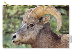 Carry-all Pouch featuring the photograph Big Horn by Lynn Sprowl