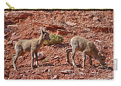 Carry-all Pouch featuring the photograph Bighorn Canyon Sheep Wyoming by Janice Rae Pariza