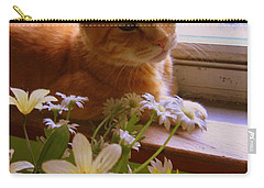 Carry-all Pouch featuring the photograph Billy, My Cat by Dora Sofia Caputo Photographic Art and Design