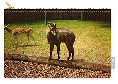 Carry-all Pouch featuring the photograph Billy Goat Keeping Lookout by Amazing Photographs AKA Christian Wilson