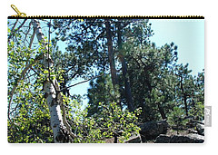 Birch Trees Carry-all Pouch by Dany Lison
