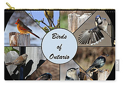 Birds Of Ontario Carry-all Pouch by Davandra Cribbie