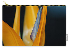Carry-all Pouch featuring the photograph Birds Of Paradise by Matt Harang