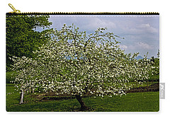 Carry-all Pouch featuring the painting Birth Of Apples by John Haldane