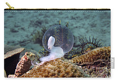 Carry-all Pouch featuring the photograph Birth Of Marine Cuttlefish by Sergey Lukashin