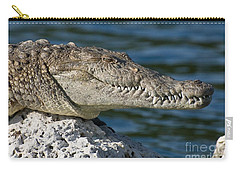Carry-all Pouch featuring the photograph Biscayne National Park Florida American Crocodile by Paul Fearn
