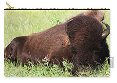 Bison Nap Carry-all Pouch by Alyce Taylor