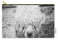 Black And White Alpaca Photograph Carry-all Pouch by Keith Webber Jr