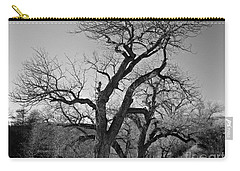 Carry-all Pouch featuring the photograph Black And White Oak by Janice Westerberg
