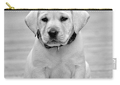 Black And White Puppy Carry-all Pouch