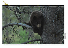 Black Bear Cub In Tree Carry-all Pouch