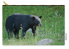 Black Bear Female Carry-all Pouch