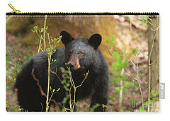 Carry-all Pouch featuring the photograph Black Bear by Geraldine DeBoer