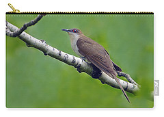 Black-billed Cuckoo Carry-all Pouch by Tony Beck