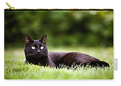 Black Cat Lying In Garden Carry-all Pouch