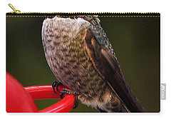 Carry-all Pouch featuring the photograph Black Chinned Male Hummingbird by Jay Milo