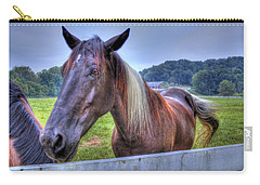 Black Horse At A Fence Carry-all Pouch