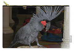 Carry-all Pouch featuring the photograph Black Palm Cockatoo by Sergey Lukashin