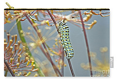 Black Swallowtail Butterfly-to-be Carry-all Pouch