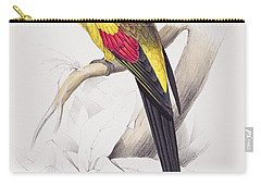 Black Tailed Parakeet Carry-all Pouch by Edward Lear