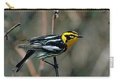 Blackburnian Warbler Carry-all Pouch by Doug Herr