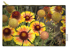 Carry-all Pouch featuring the photograph Blanket Flowers  by Belinda Greb