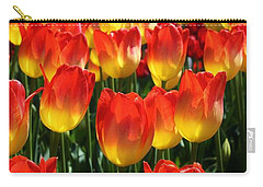 Blazing Color Carry-all Pouch by Bruce Bley