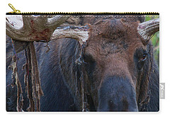 Carry-all Pouch featuring the photograph Blood In His Eye by Jim Garrison
