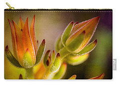 Blooming Succulents Iv Carry-all Pouch