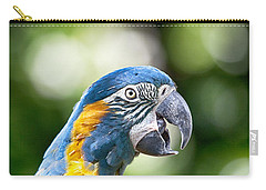 Blue And Gold Macaw V2 Carry-all Pouch by Douglas Barnard