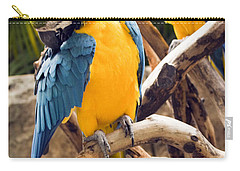 Blue And Yellow Macaw Pair Carry-all Pouch