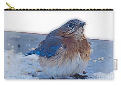 Blue Bird 4 Carry-all Pouch
