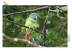 Blue Crowned Parakeet Carry-all Pouch by James Brunker