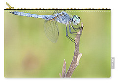 Carry-all Pouch featuring the photograph Blue Dasher by Bryan Keil