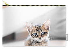 Blue Eyed Kitten Carry-all Pouch by Shelby  Young