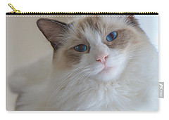 Blue-eyed Ragdoll Kitten Carry-all Pouch