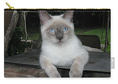 Blue Eyes Carry-all Pouch by Deborah Lacoste