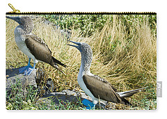 Blue-footed Boobies Carry-all Pouch by William H. Mullins