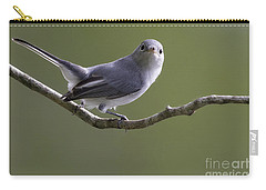 Blue-gray Gnatcatcher Carry-all Pouch by Meg Rousher