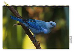Blue Grey Tanager Carry-all Pouch by Chris Flees